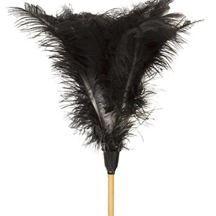 Promop Feather Duster - 1800mm Length